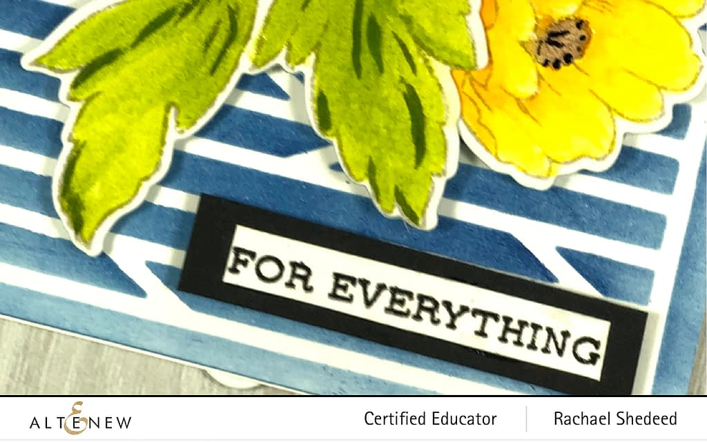 Wednesday Watercolors with Book Engravings Stamp and Die Bundle